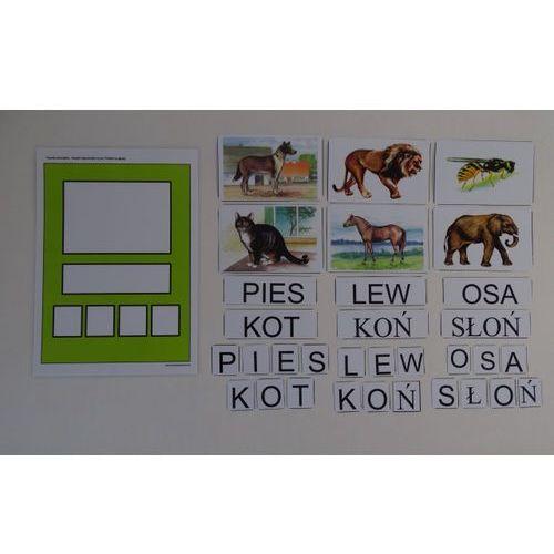 Nazywam zwierzęta, dzielę wyraz na sylaby i głoski marki Bystra sowa