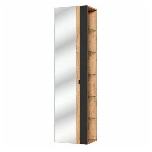 Pionowa podwieszana szafka łazienkowa z lustrem - malta 6x czarny mat marki Producent: elior