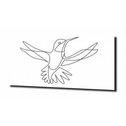 obraz na szkle, panel szklany Koliber szkic 100X80, G029