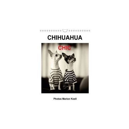 CHIHUAHUA CHIC Photos Marion Koell / UK-Verison 2018