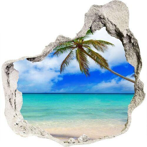 Dziura 3d w ścianie naklejka karaiby plaża marki Wallmuralia.pl