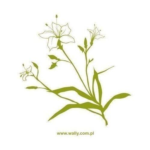 Wally - piękno dekoracji Naklejka kwiaty 1434