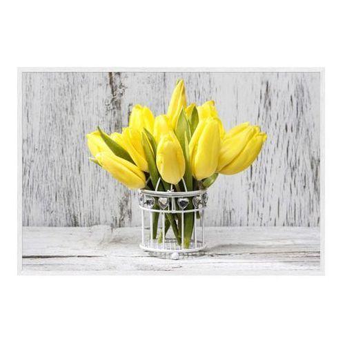 Obraz Żółte Tulipany 60 x 90 cm, 6090,024L34,17,087
