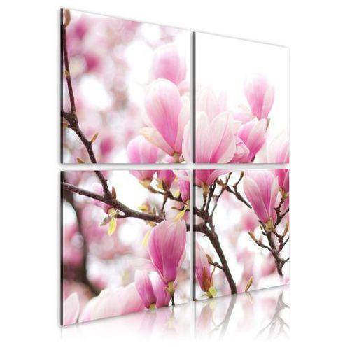 Obraz - Kwitnące drzewo magnolii