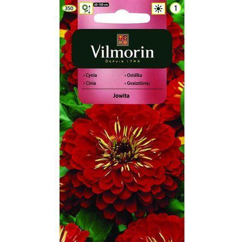 Cynia wytworna jowita czerwona 1g  marki Vilmorin