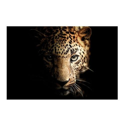 Obraz Glasspik Leopard 70 x 100 cm (5907664198058)
