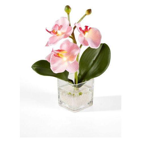 Orchidea led (1 szt.) jasnoróżowy marki Bonprix