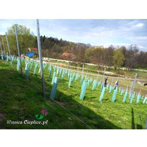 Winnica cieplice Montaż rusztowań i ogrodzeń