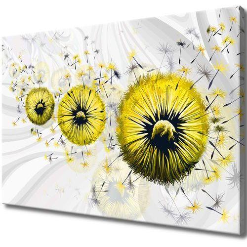 Obraz na Płótnie Żółte dmuchawce 5 salon sypialnia