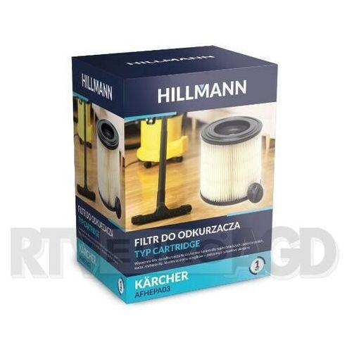 HILLMANN AFHEPA03