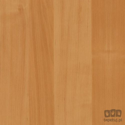 Okleina meblowa olcha jasna 90cm 200-5506, 200-5506