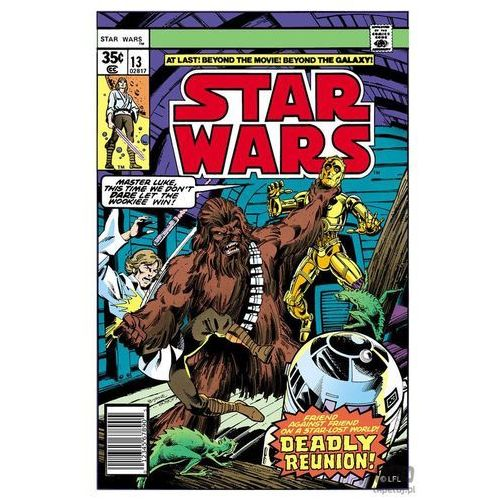 Obraz Star Wars - Deadly Reunion 70-458, 70-458