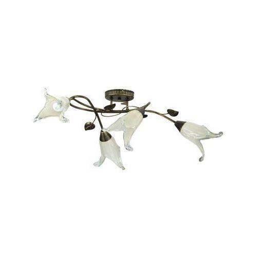 Lampex Plafon planta 4 091/4 c+z * - - sprawdź kupon rabatowy w koszyku