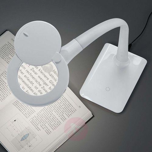 lupo lampa stołowa led biały, 1-punktowy - design - obszar wewnętrzny - lupo - czas dostawy: od 4-8 dni roboczych marki Trio