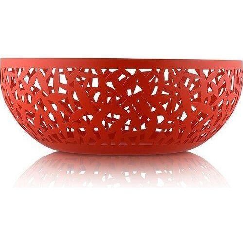 Misa na owoce Cactus! czerwona 29 cm, MSA04/29 R