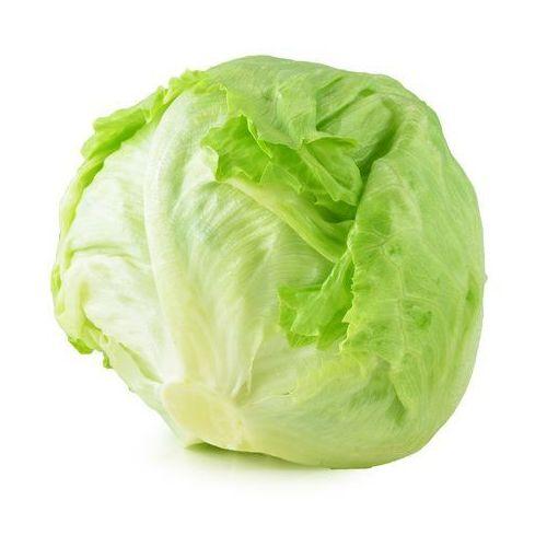 Sałata lodowa świeża bio (1 szt.) marki Świeże (owoce, warzywa, grzyby) - tacki i sztuki