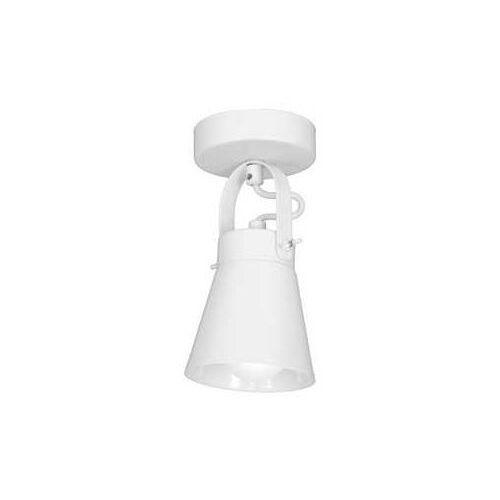 Luminex Plafon amos 8119 spot lampa sufitowa 1x60w e27 biały (5907565981193)