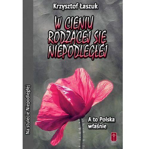 W cieniu rodzącej się niepodległej. A to Polska właśnie. (9788363459895)