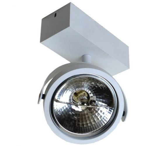 Spot LAMPA sufitowa GO SL1 89962 Zumaline metalowa OPRAWA ścienna minimalistyczny okrągły reflektor biały, 89962