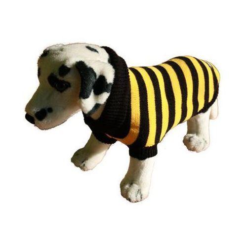 Ami play  sweter dla psa paski żółto-czarne rozmiary 1-6