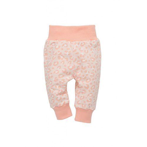 Pinokio Spodnie niemowlęce dresowe 5m35am