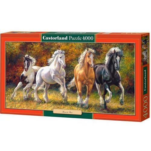 Castorland, Born to Run, puzzle, 4000 elementów