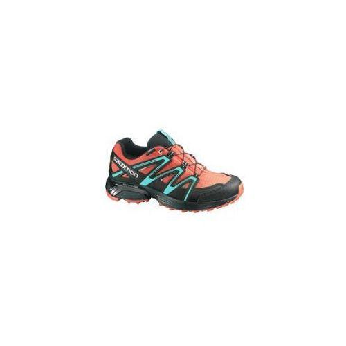 Salomon Damskie buty do biegania xt hornet gtx w red/blue 38