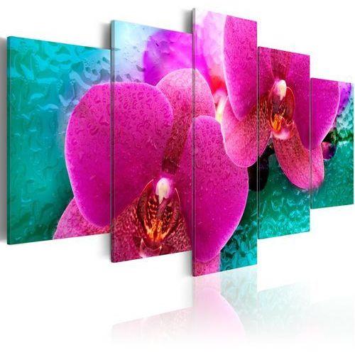 Obraz - exotic orchids marki Artgeist