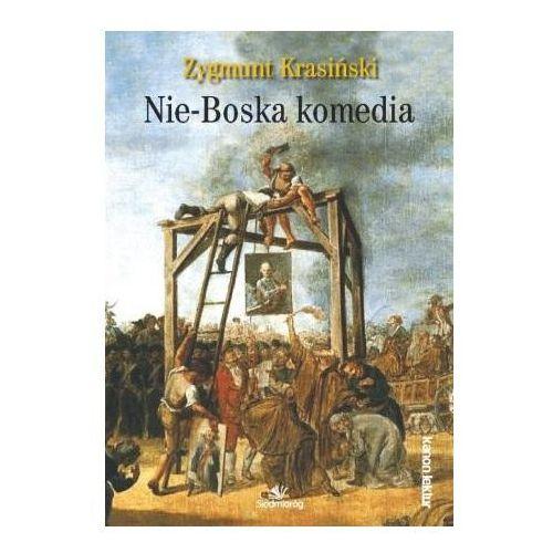 Nie-Boska komedia Kanon lektur Zygmunt Krasiński
