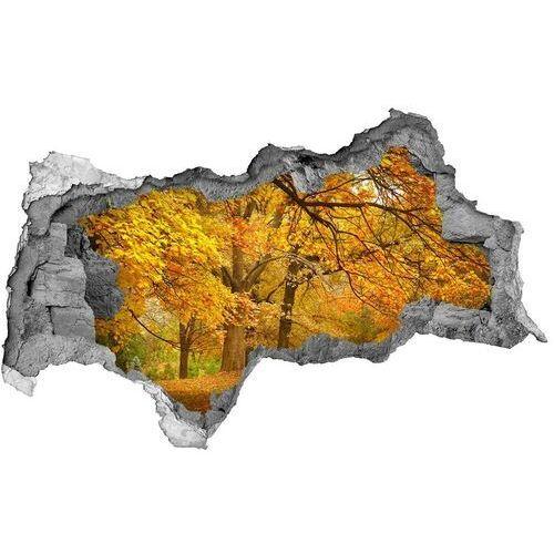 Wallmuralia.pl Dziura 3d w ścianie naklejka jesień w parku