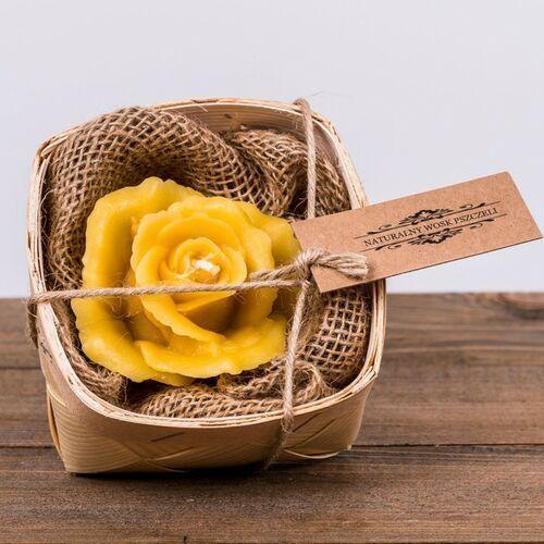 Łysoń Świeca woskowa róża w łubiance (45 mm / 80 mm) (5906660810230)