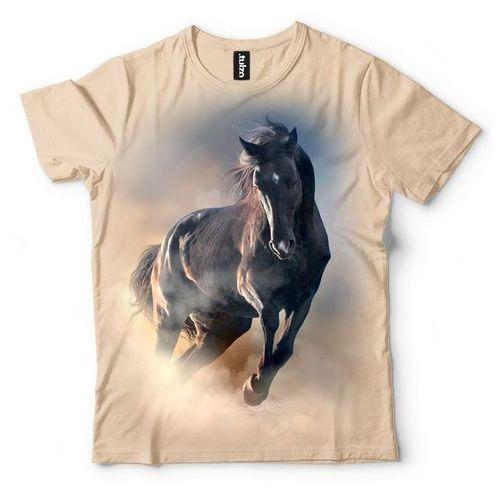 Czarny koń marki Tulzo