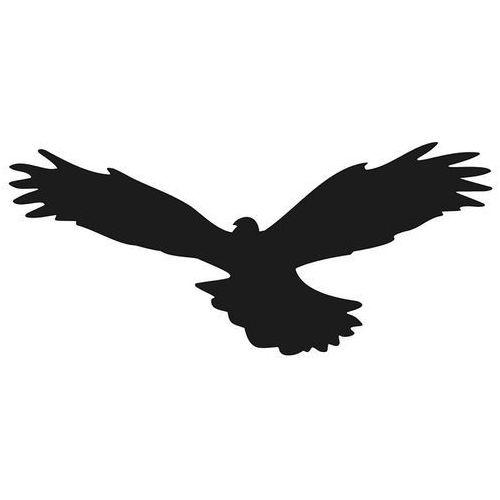 Odstraszanie Naklejki na szyby, ptak drapieżny wzór 01. naklejka odstraszacz.