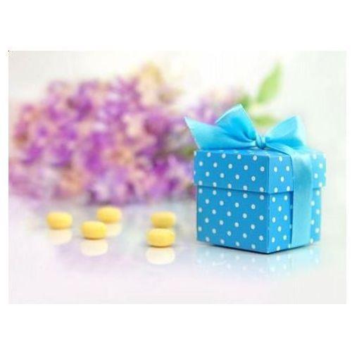 Pudełeczka dla gości z kokardką błękitne - 10 szt. (5901157437112)
