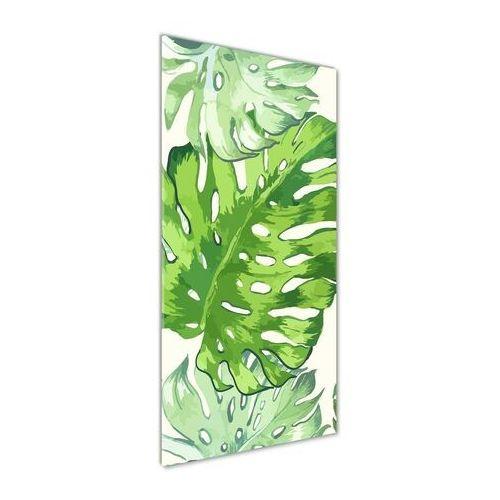 Foto obraz na szkle Tropikalne liście