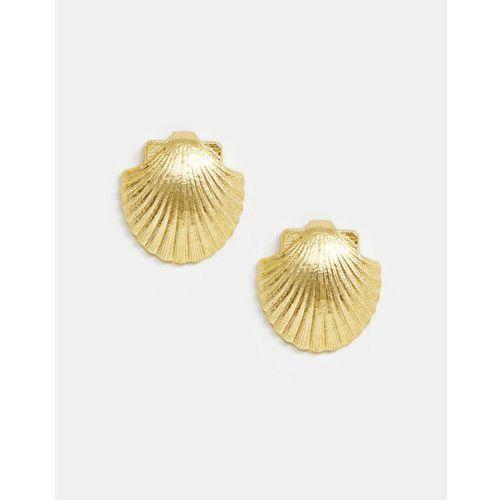 Mango shell earrings in gold - Gold