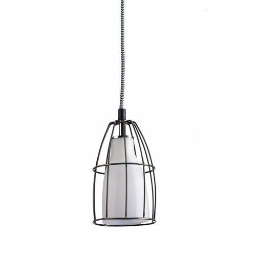 LAMPA wisząca FRAME S 10331101 Kaspa szklana OPRAWA retro ZWIS klatka drut biały matowy czarny (5902047301575)
