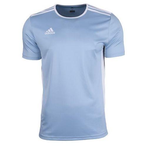 Adidas koszulka junior t-shirt entrada 18 cd8414