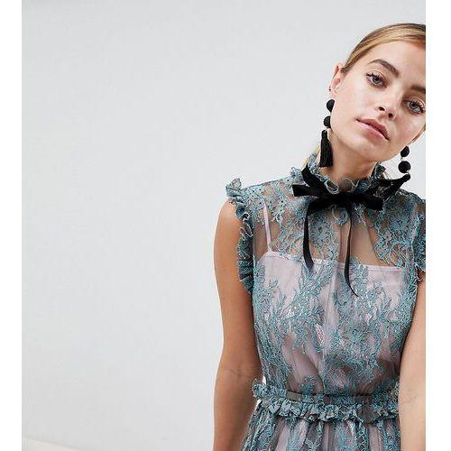Asos petite Asos design petite lace skater mini dress with velvet tie neck - multi