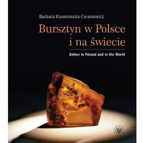 Bursztyn w Polsce i na świecie Amber in Poland and in the World (9788323526032)