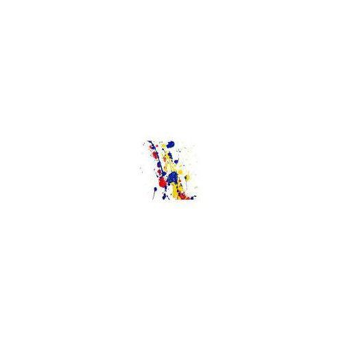 Splash Paint. Kolorowa Abstrakcja - reprodukcja (5901891531671)