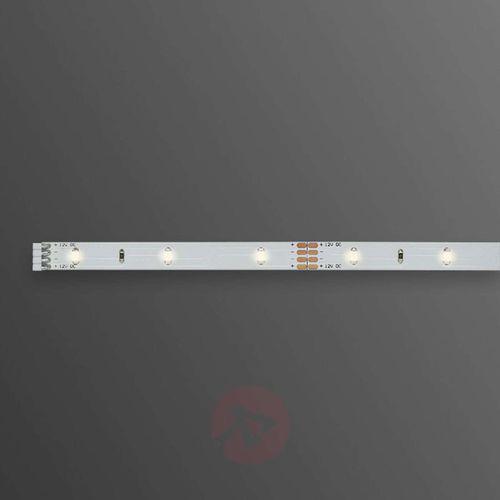 Taśma LED ze złączem męskim 12 V 100 cm ciepły biały Paulmann YourLED Eco 70459 (4000870704592)
