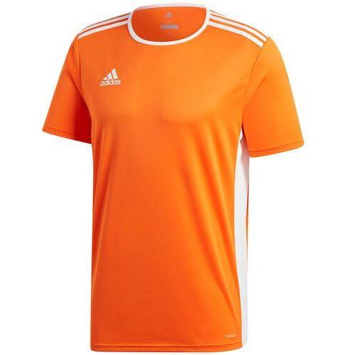 Koszulka dla dzieci entrada 18 jersey junior pomarańczowa cd8366/cf1043 marki Adidas