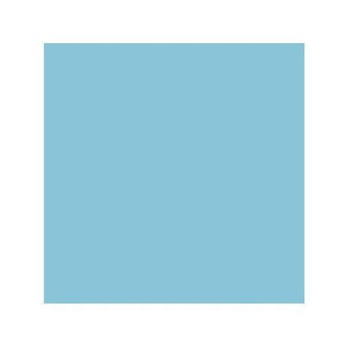 Colorama kartonowe 1,35x11m - Forget me not z kategorii Tła fotograficzne