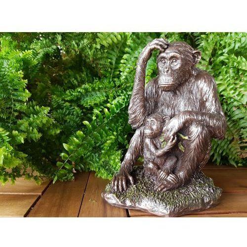 Oryginalna figurka orangutan z młodym marki Veronese