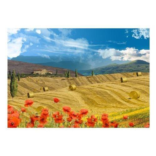 Artgeist Fototapeta - jesienny krajobraz