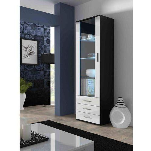 High glossy furniture Simple witryna wysoka