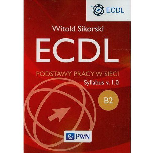 ECDL B2 Podstawy pracy w sieci (kategoria: Informatyka)