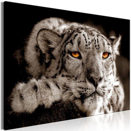 Artgeist Obraz - magiczne oczy (1-częściowy) szeroki
