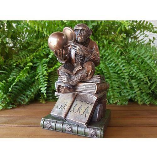 Szkatułka - szympans uczony -ewolucja marki Veronese